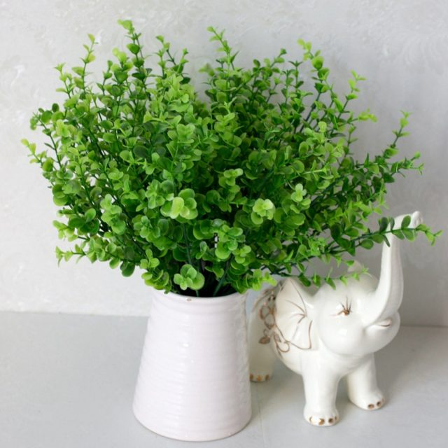 Birthday Gift Ideas for Her – decorative plants