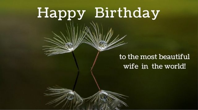 Pretty Birthday Wishes for Wife with Images