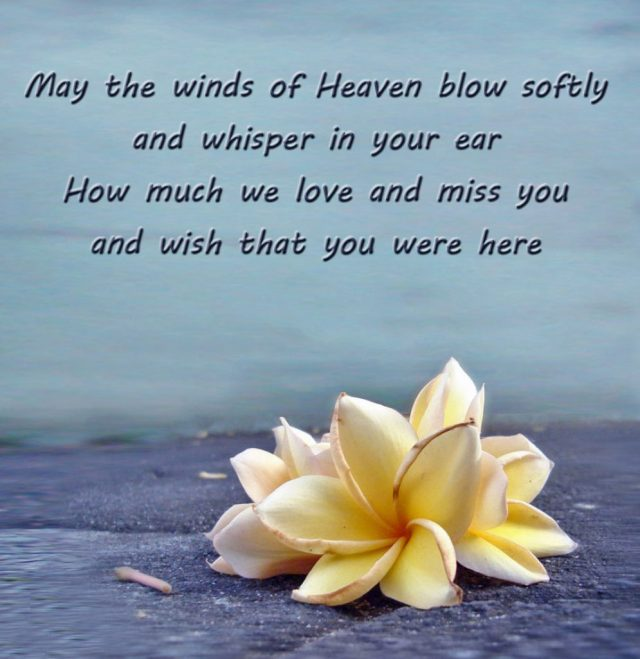 Birthday In Heaven Quotes Birthday Quotes For Someone In Heaven