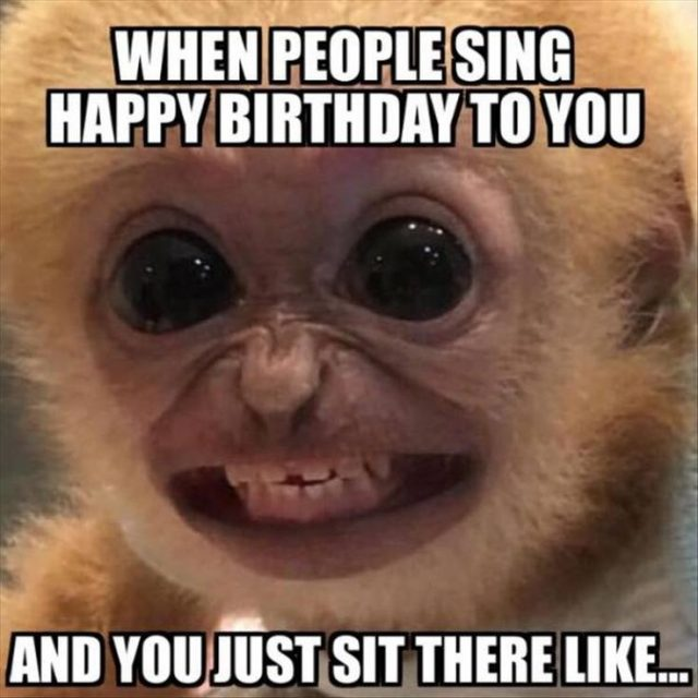 Birthday Funny Meme – Birthday songs