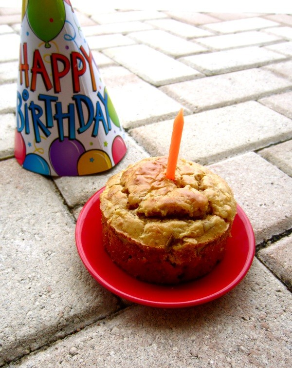 Grain-Free Peanut Butter Apple Dog Birthday Cake