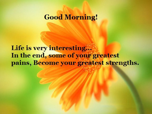 Interesting Good Morning Quotes