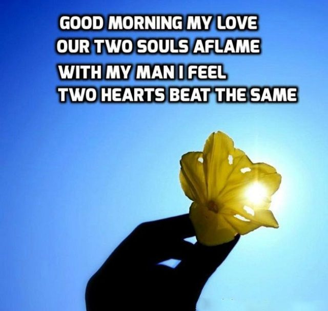 good morning quotes for him – for my love