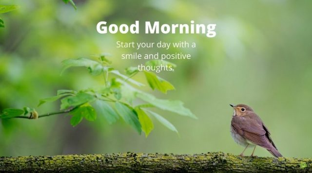 good morning quotes – start your day